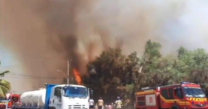 Incendio forestal cercano a bencinera afecta a sector Monte Patria