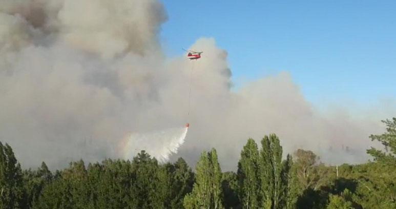 Nacimiento: incendio forestal lleva más de 530 hectáreas consumidas