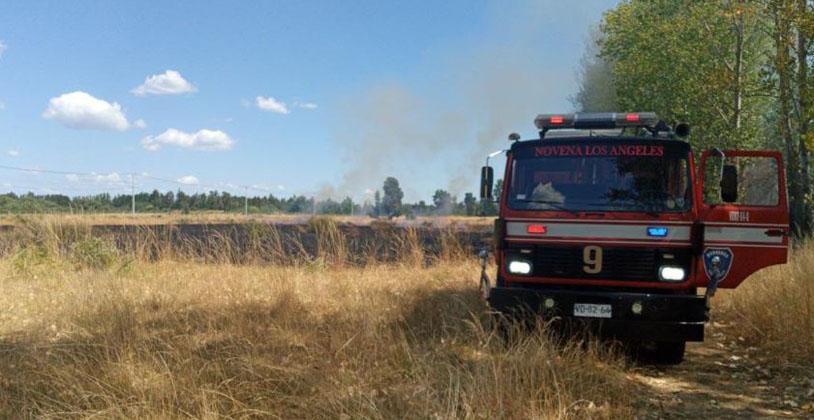 Los Ángeles: incendio de pastizales afectó al recinto Socabío