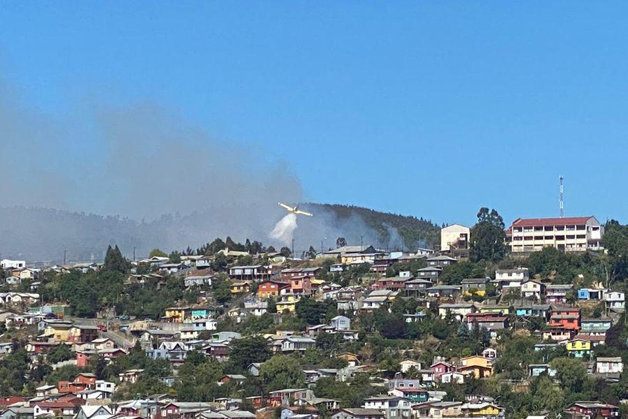 Intendencia del Biobío declaró Alerta Roja en Tomé por incendio forestal