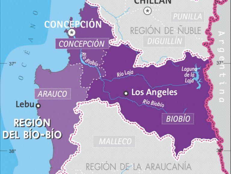 Viernes 19 de Febrero: Reporte de casos por comuna en la Región del Biobío